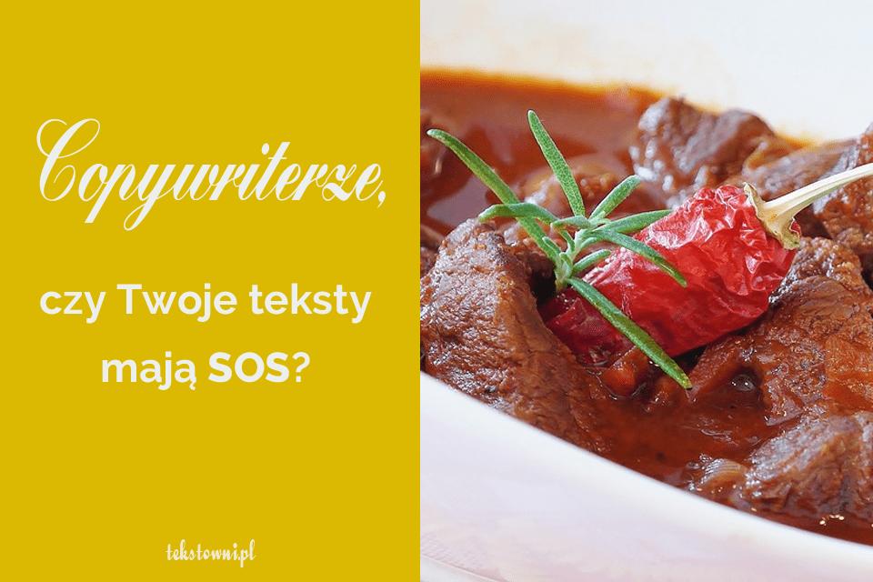 jak dobrze pisać, Copywriterze, czyTwojeteksty mają sos?, Tekstowni.pl
